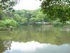 0510sayamakouen_ike
